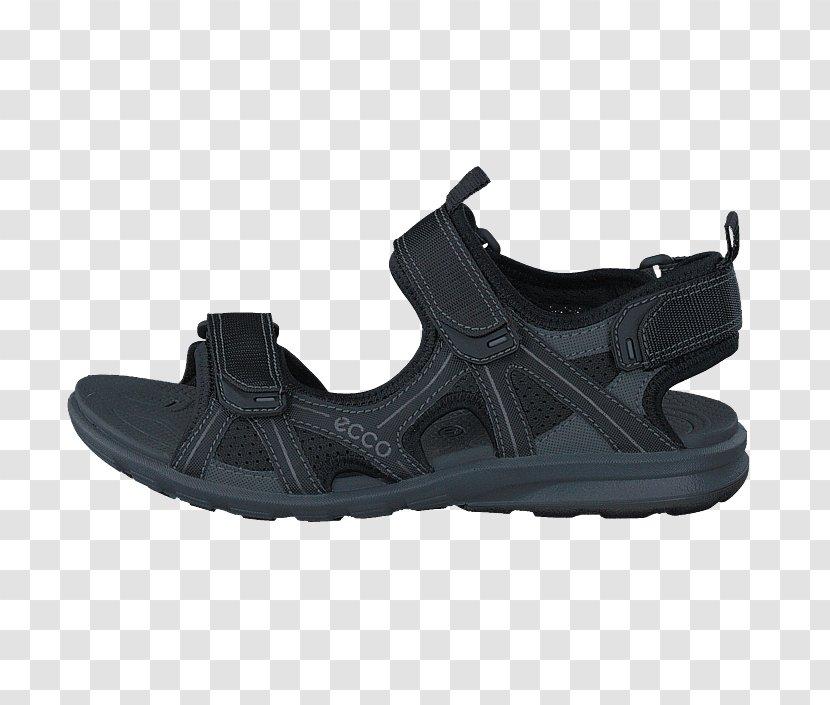 Sports Shoes Adidas ECCO Sandal