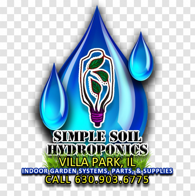 Logo Brand Font Transparent PNG