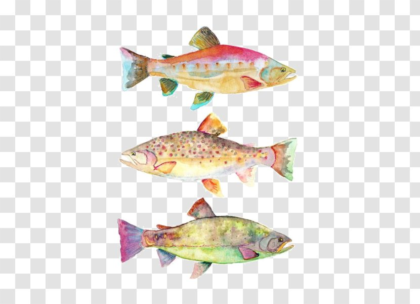 Watercolor Painting Art Koi Fish Oil Paint Transparent Png