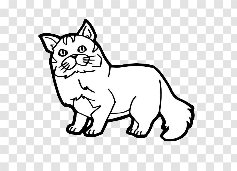 - Cat Kitten Coloring Book Illustration - Line Art - Simple Cat's Nose  Transparent PNG