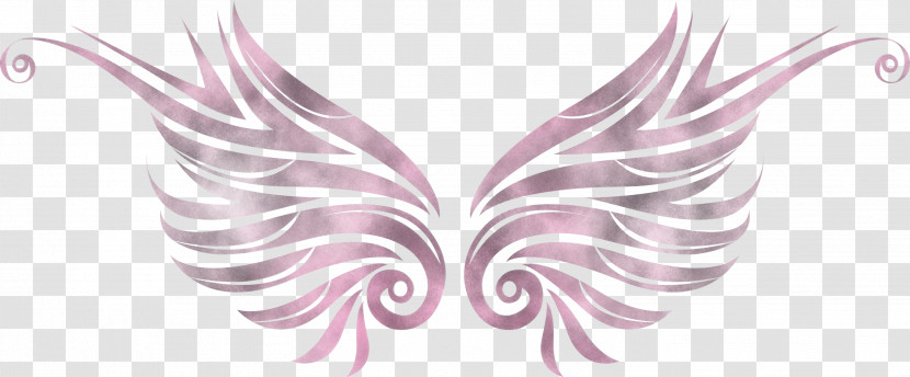 Wings Bird Wings Angle Wings Transparent PNG