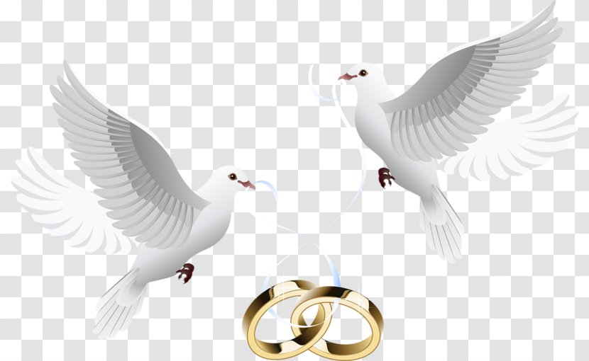 Wedding Invitation Clip Art - Marriage - Dove Inlay Ring Transparent PNG