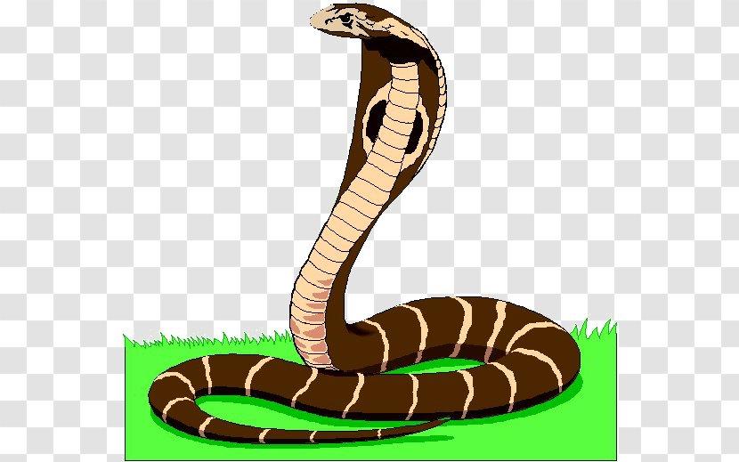 Snake Animated Film Clip Art - Indian Cobra Transparent PNG