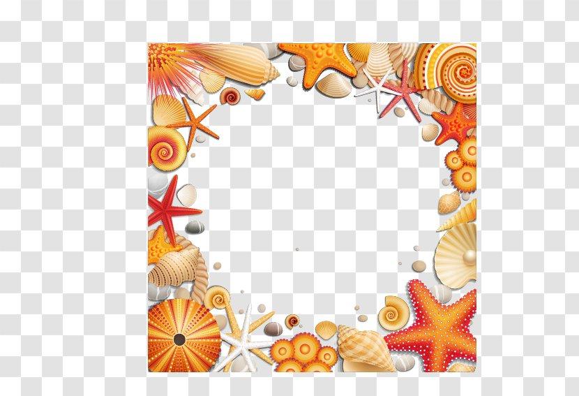 Seashell Seaside Resort Clip Art - Starfish - Shells Border Transparent PNG