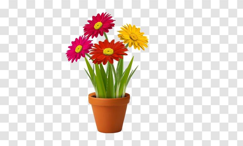 Diwali Fireworks 4015*4033 transprent Png Free Download - Plant, Flowerpot,  Flower. - CleanPNG / KissPNG
