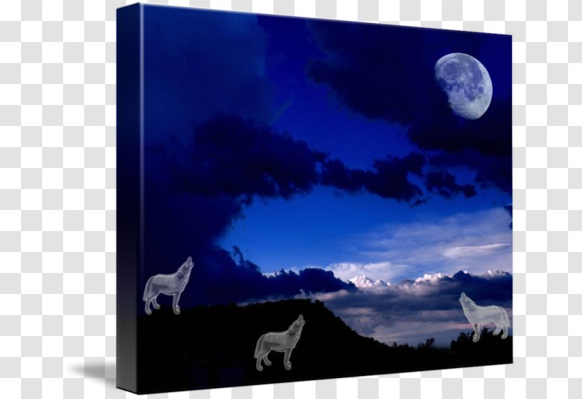 Moon Desktop Wallpaper Stock Photography Gray Wolf Howling In The Moonlight Transparent Png