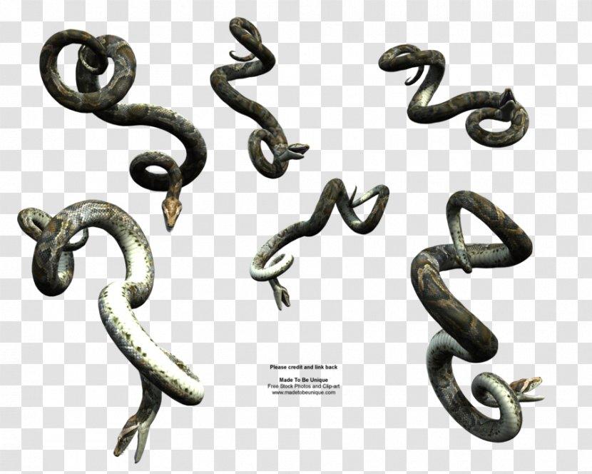 Snake Reptile DeviantArt - Anaconda Transparent PNG