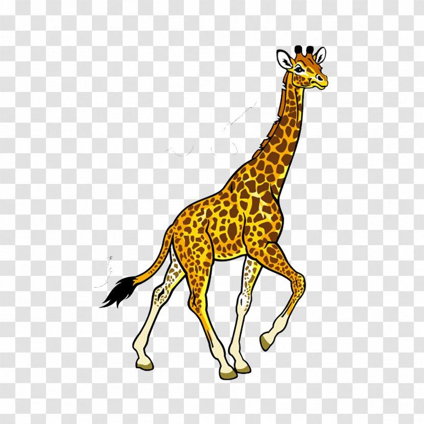 Fauna Of Africa Baby Jungle Animals Clip Art - Free Content - Giraffe Transparent PNG