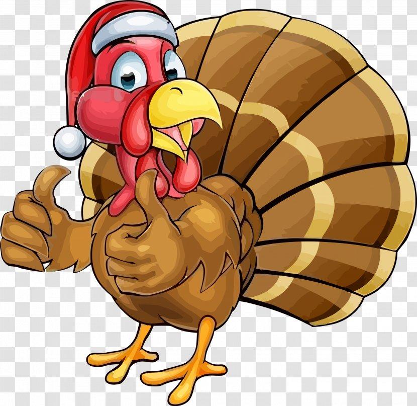 Thanksgiving Turkey - Bird Transparent PNG