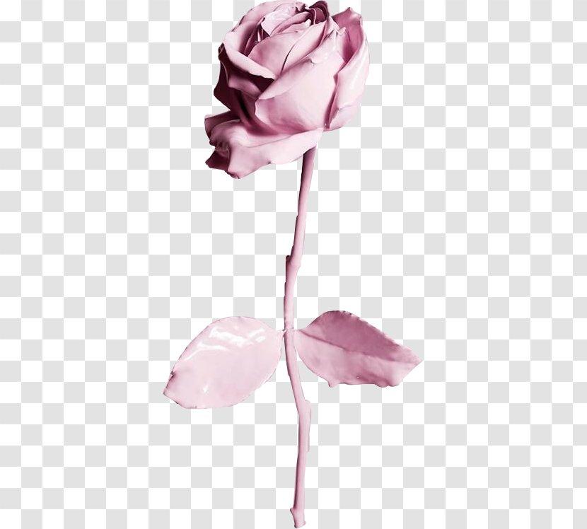 Desktop Wallpaper Iphone 6 Best Roses Iphone Rose Transparent Png