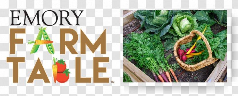 Vegetable Brand Emory University Promotional Merchandise - Grass Transparent PNG
