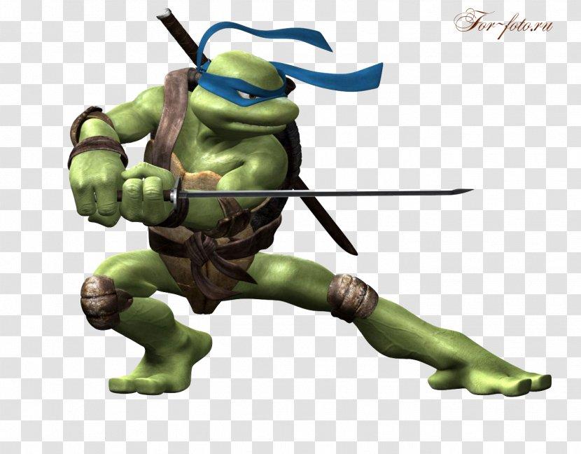 Leonardo Raphael Teenage Mutant Ninja Turtles Drawing Transparent Png