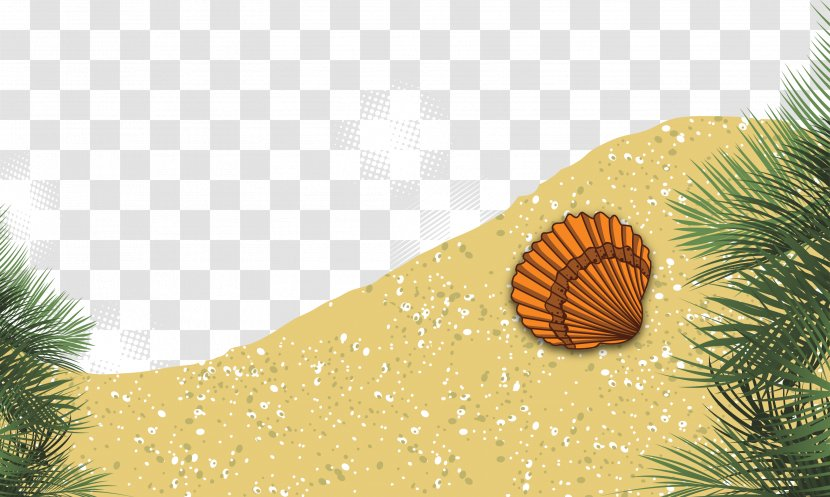 Beach Summer Euclidean Vector Download - Tree Transparent PNG