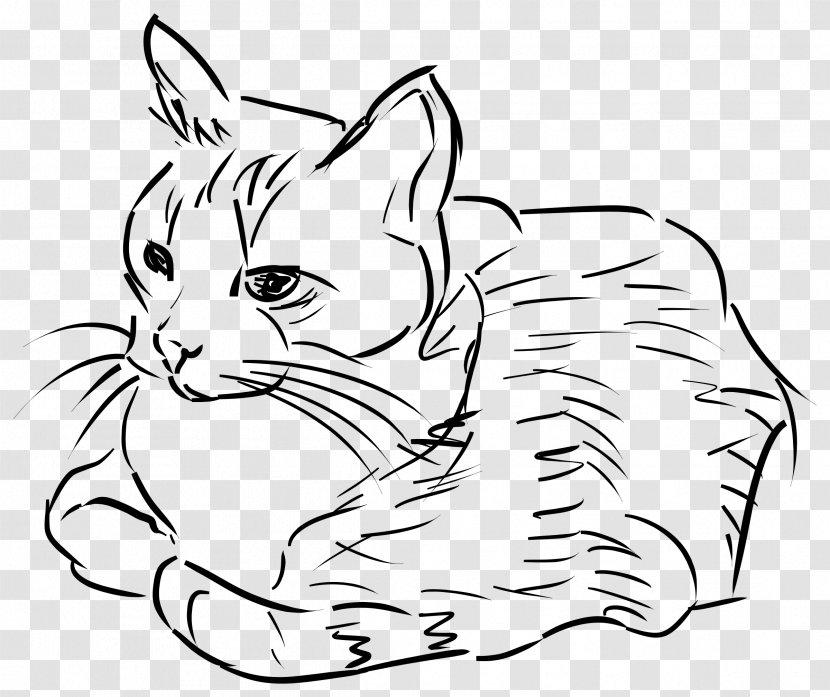 Cat Kitten Drawing Felidae Clip Art - Carnivoran Transparent PNG