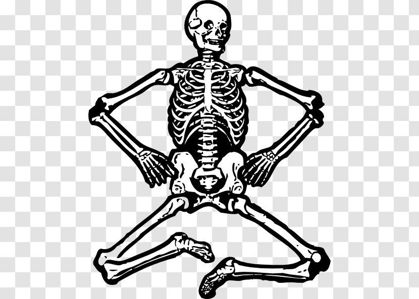 Human Skeleton Skull Clip Art - Fun Cliparts Transparent PNG