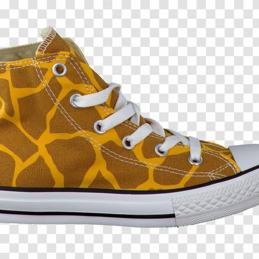 Skate Shoe Sneakers Nike Converse