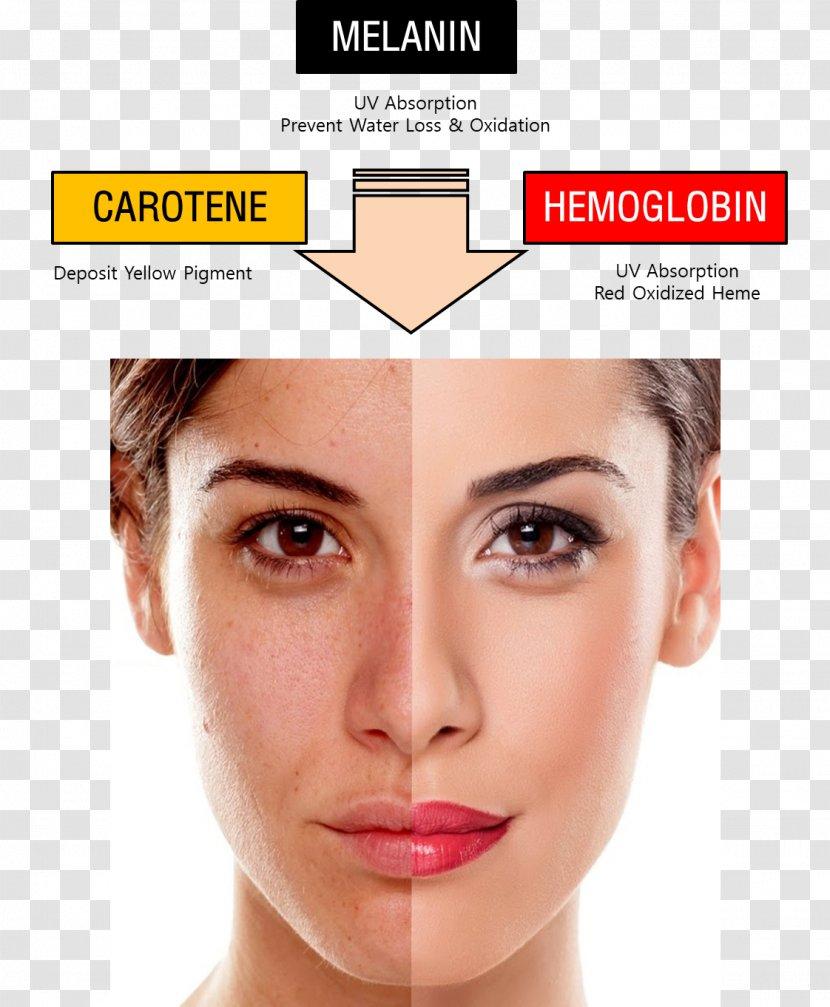 Cosmetics Permanent Makeup Skin