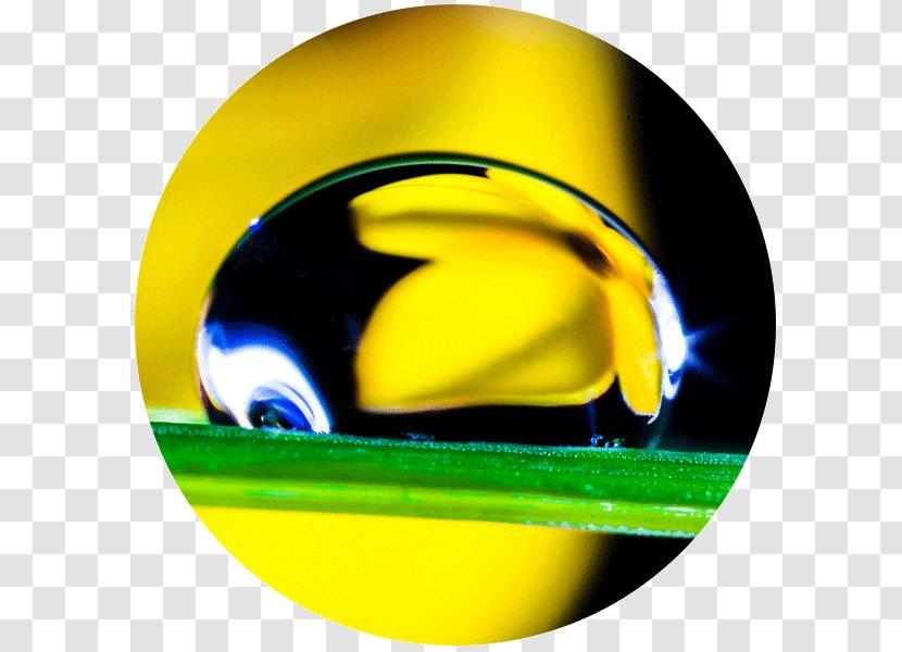 Photography Drop Hydrogen Bond - Basissch De Zeven Mijlen Transparent PNG