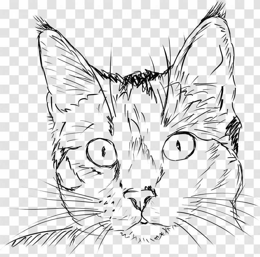 Draw Cats Drawing Sketch Kitten Deviantart Clipart Cat Face Line Art Transparent Png