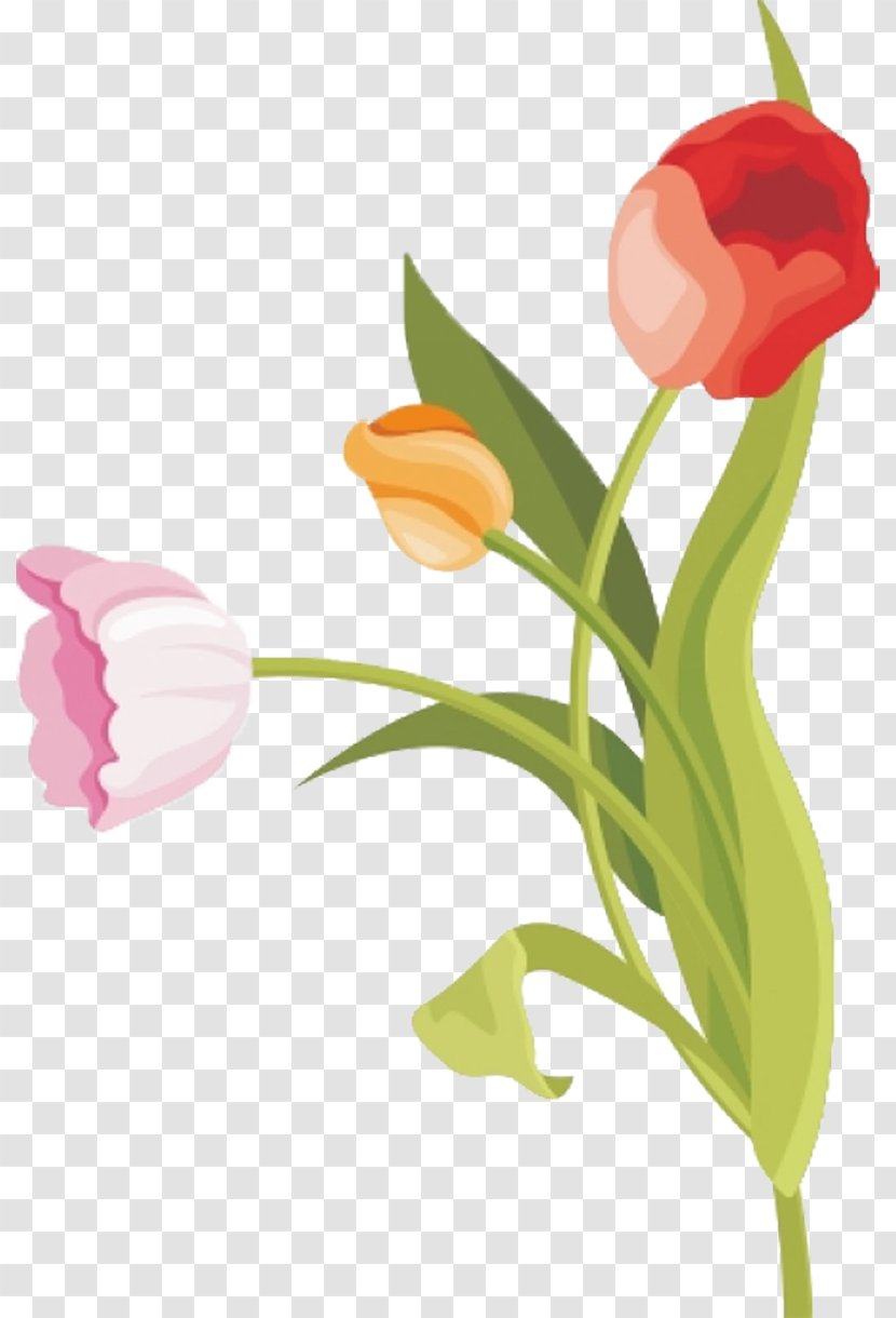 tulip vector graphics flower watercolor painting floral design transparent png tulip vector graphics flower watercolor