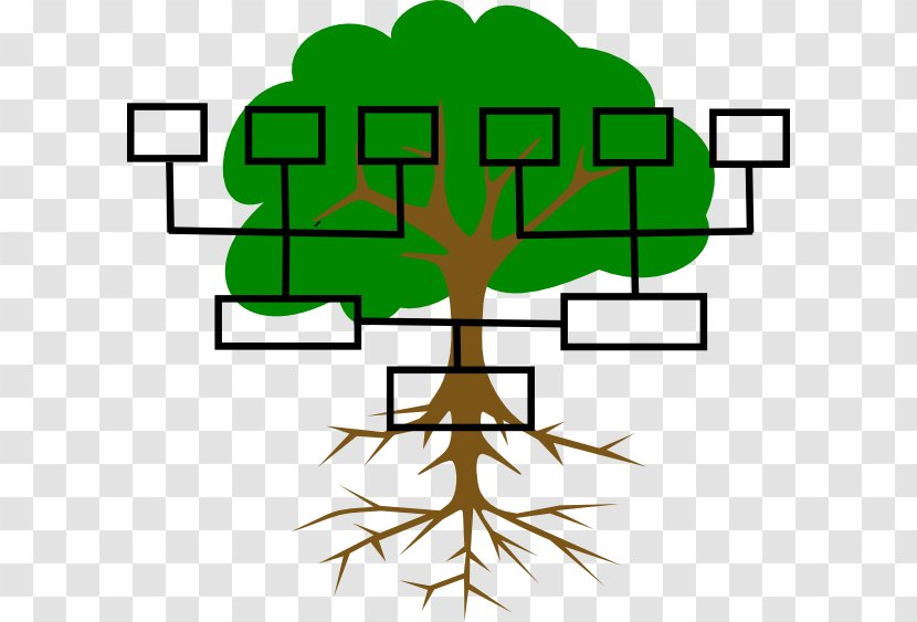Family Tree Genealogy Ancestor Clip Art - Surname - Line Cliparts Transparent PNG