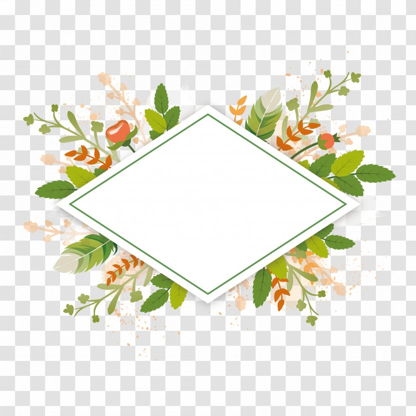 Wedding Invitation Greeting Card E Card Morning Birthday Point Vector Green Plant Borders Transparent Png