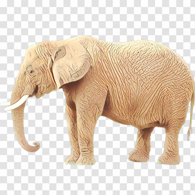 African Elephant Indian Tusk Terrestrial Animal Transparent Png Far cry primal woolly mammoth prehistory dinosaur game, dinosaur png. pnghut com