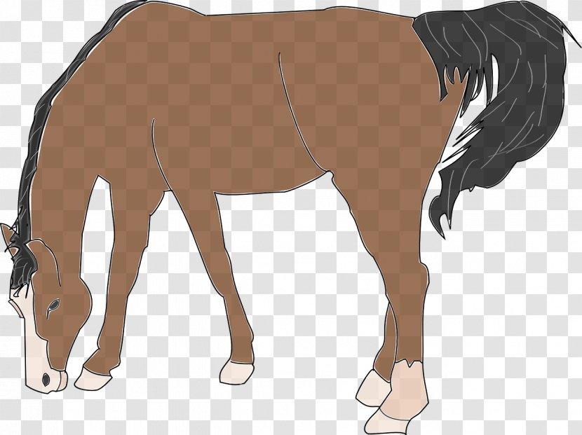 Website Free Content Clip Art - Brown Horse Transparent PNG