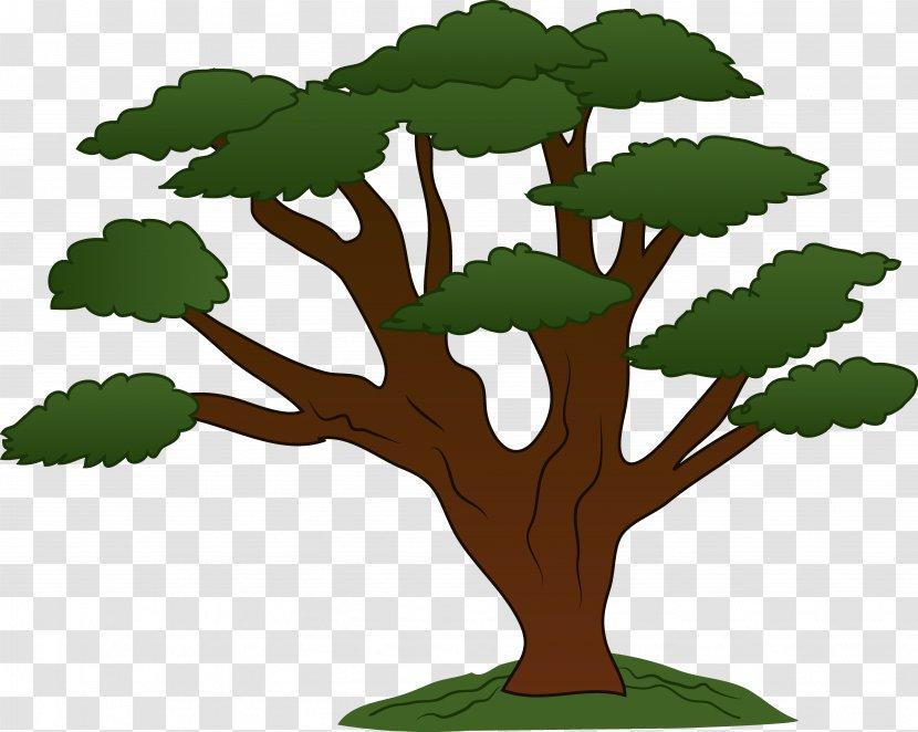 Tree Oak Clip Art Cartoon Transparent Png The latest cartoons online & series cartoons and highest quality for you. tree oak clip art cartoon transparent png