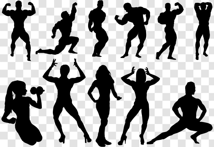 Bodybuilding Silhouette Physical Fitness Clip Art Figures Transparent Png