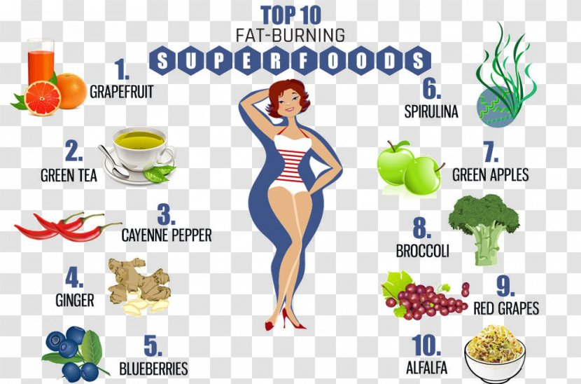 fat loss protein diet