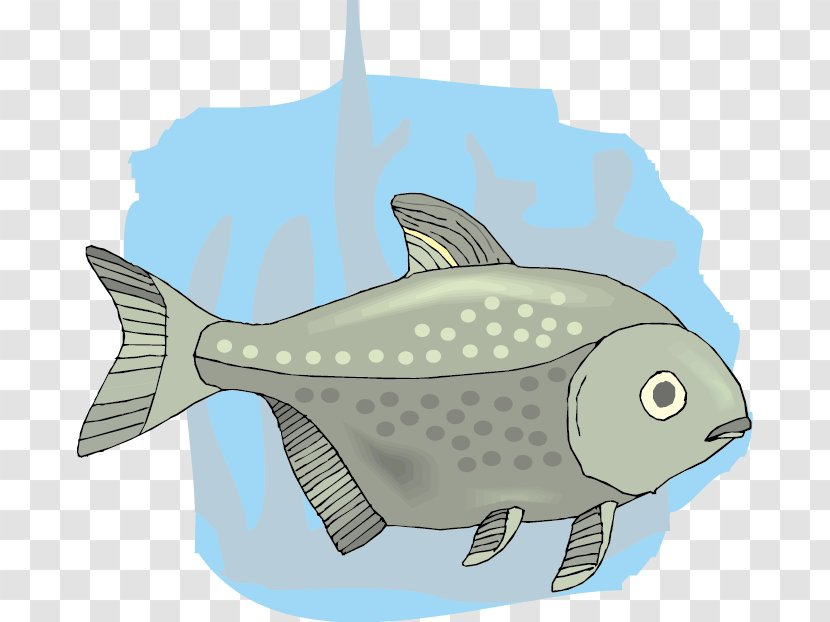Cartoon Drawing Cute Cartoon Fish Transparent Png