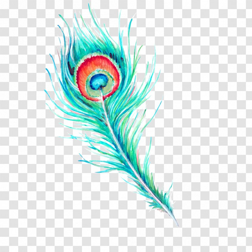 Feather Watercolor Painting Hand Painted Peacock Hair Transparent Png