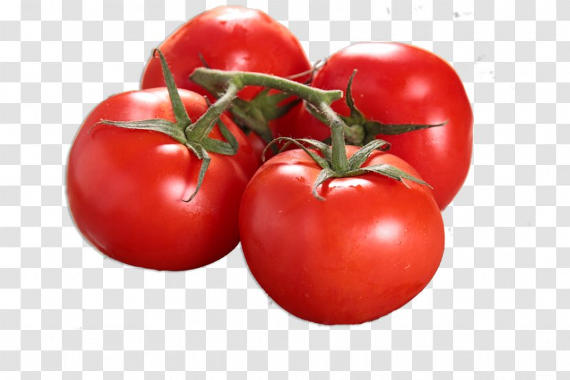 Ratatouille Food Plum Tomato Cherry - Vegetable Transparent PNG