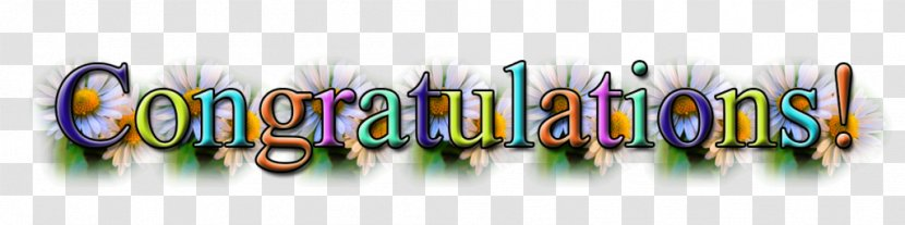 Image File Formats Akrobatikus Rock And Roll - Free Download Of Congratulations Icon Clipart Transparent PNG