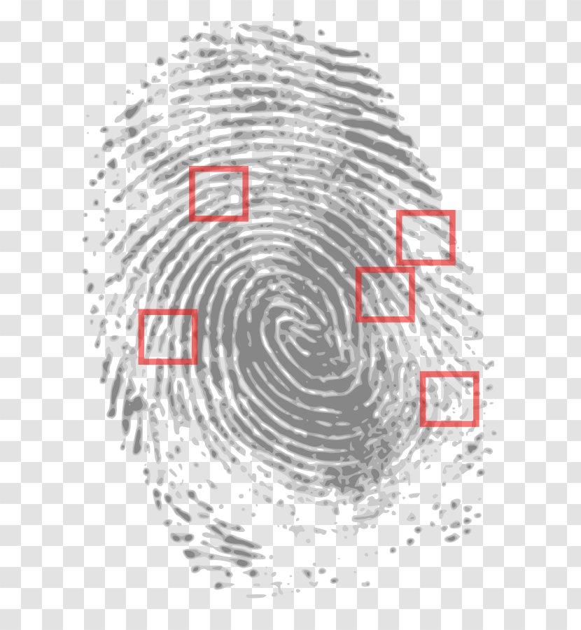 Crime Scene Evidence Forensic Science Court Point Scan The Fingerprint Transparent Png