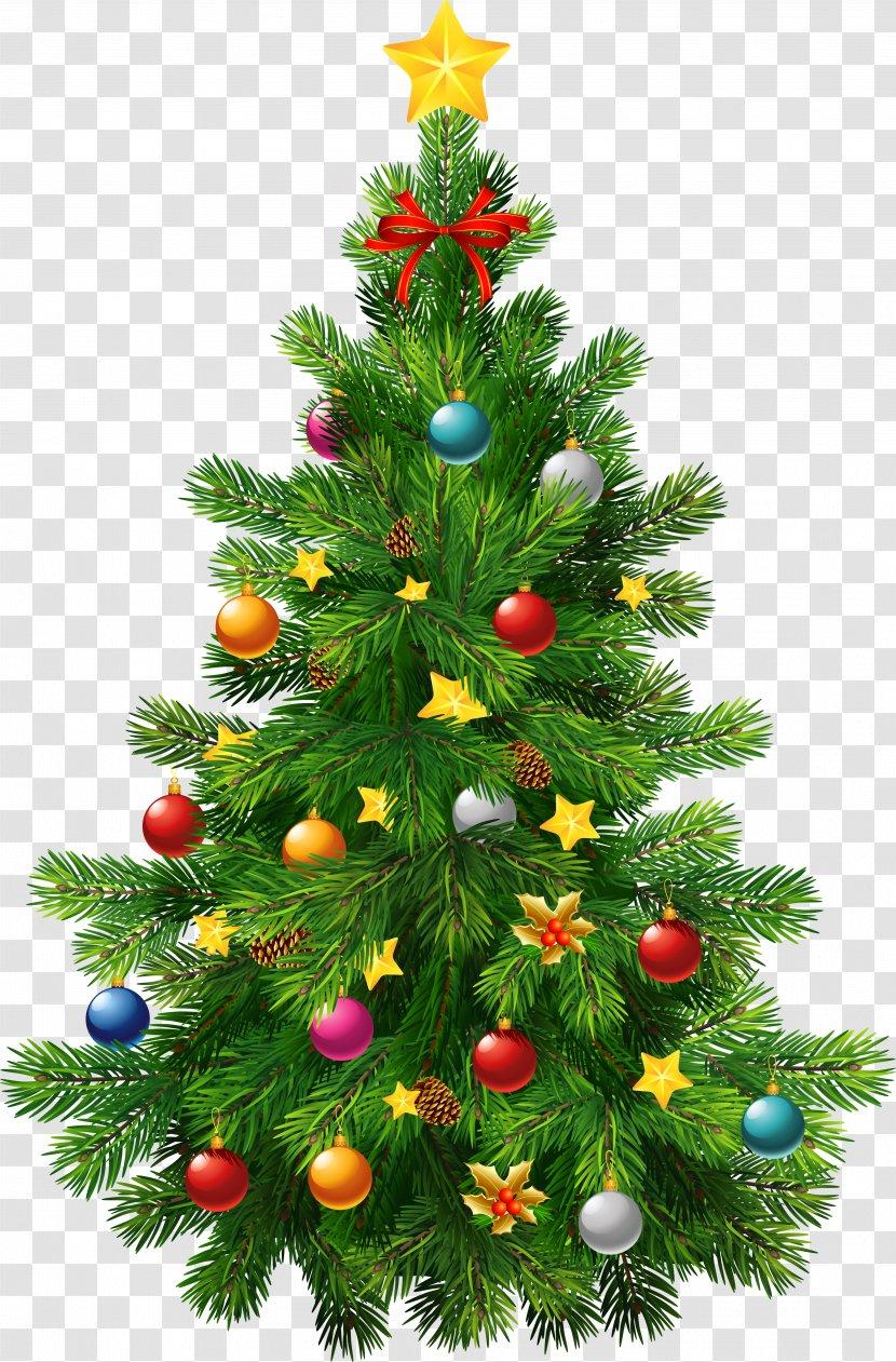 christmas tree ornament clip art conifer large transparent deco clipart transparent png christmas tree ornament clip art