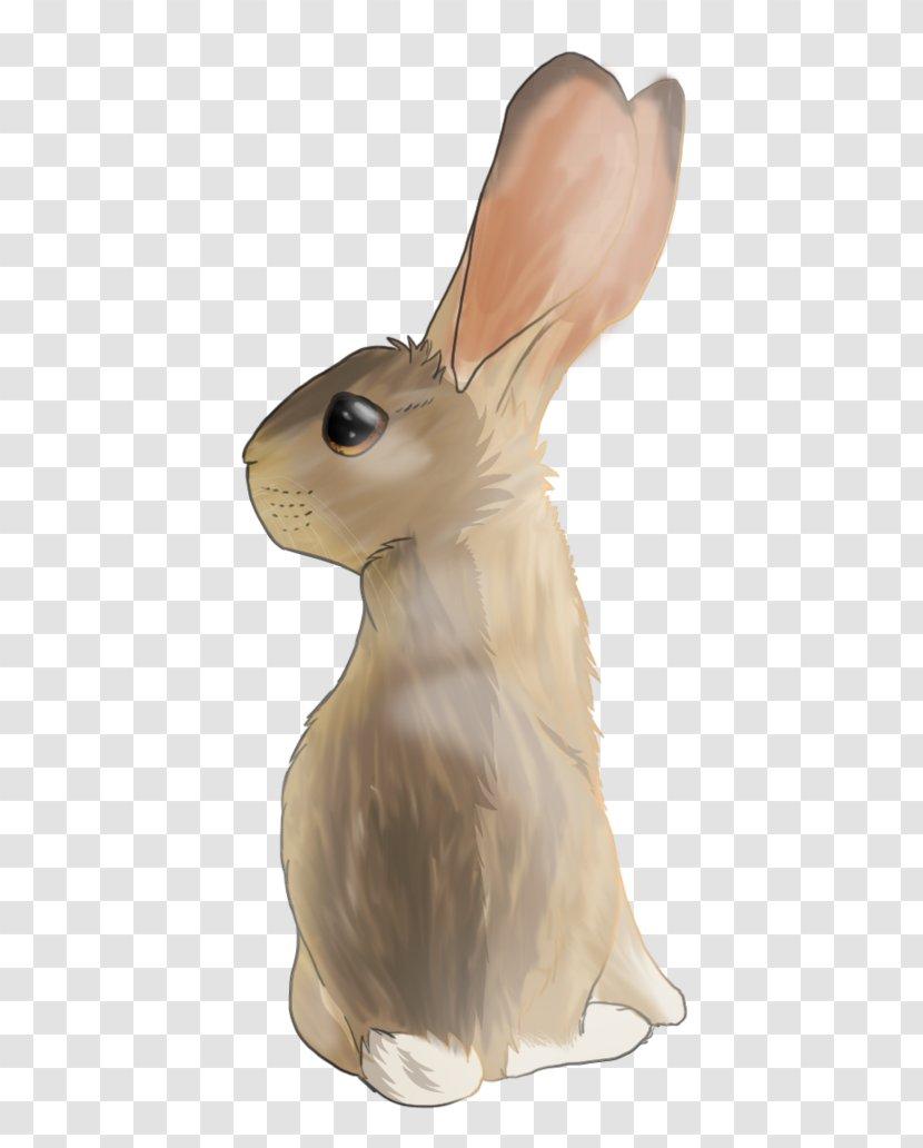 Domestic Rabbit Hare Transparent PNG