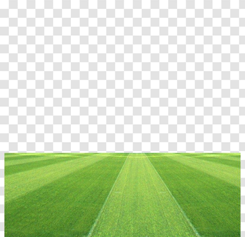 Football Pitch Grassland Stadium - Field Transparent PNG