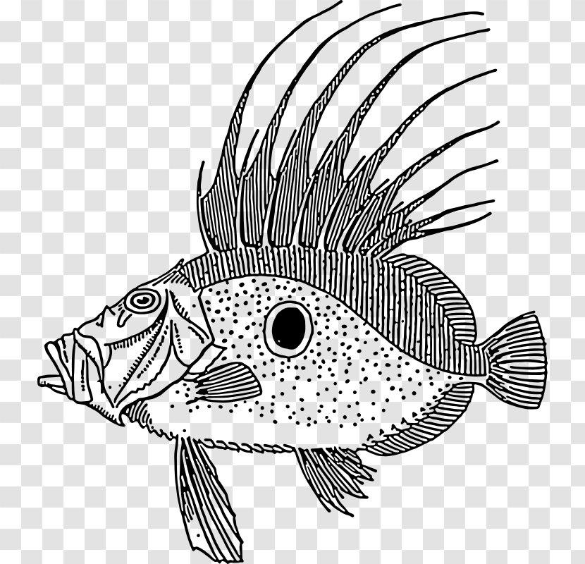 Coral Fish Stock Illustrations – 23,412 Coral Fish Stock Illustrations,  Vectors & Clipart - Dreamstime