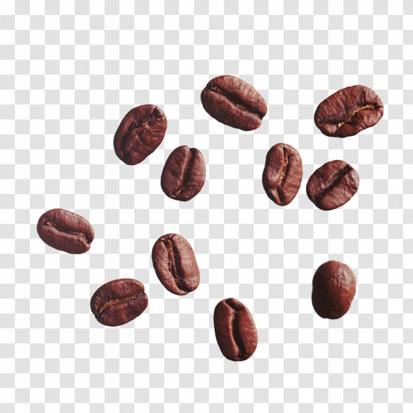 Coffee Bean Cafe Clip Art - Messy Beans Transparent PNG