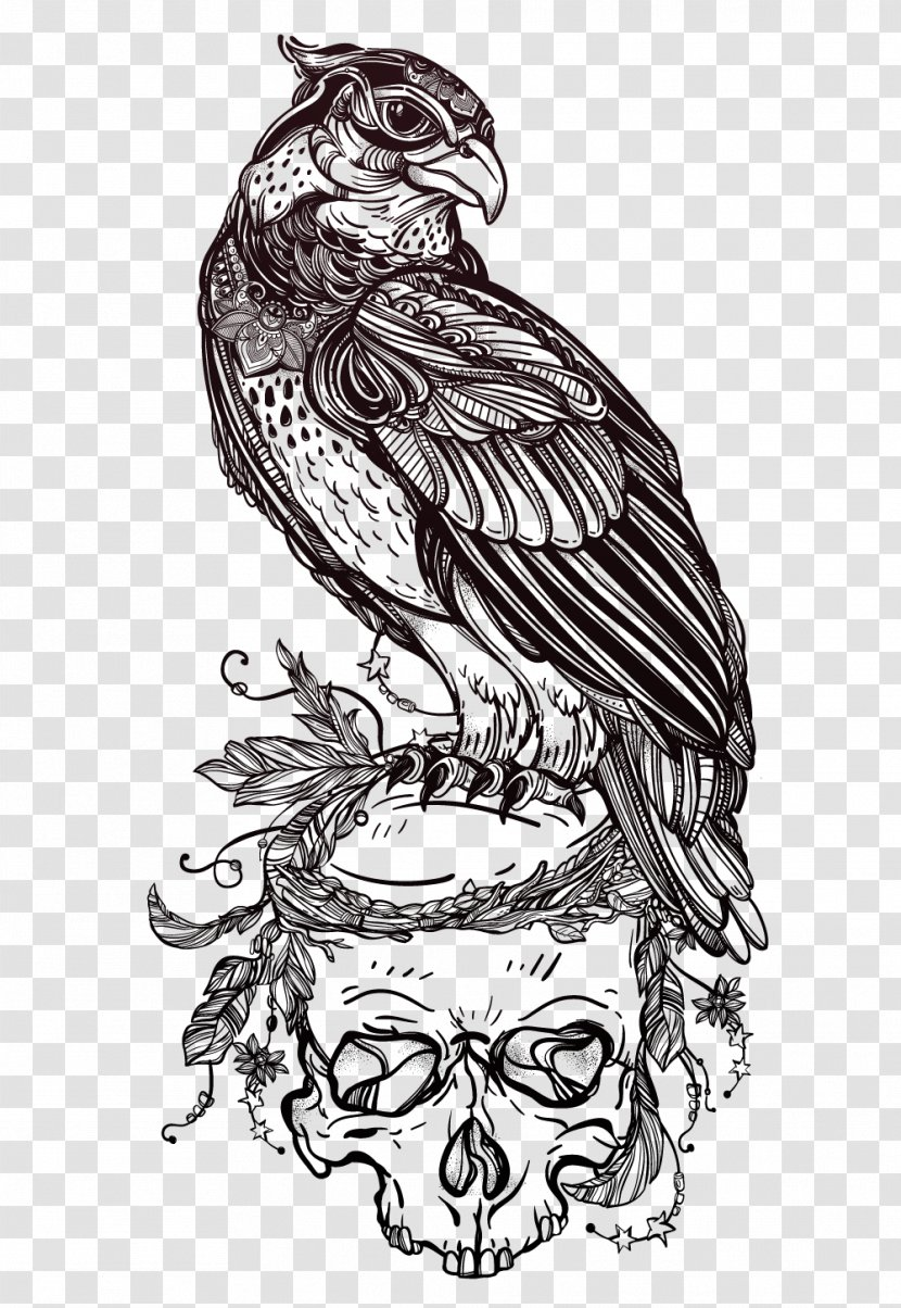 Bird Of Prey Owl Drawing Tattoo - Monochrome Photography - Eagle Skull Illustrator Vector Material Transparent PNG
