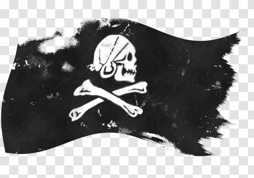 Jolly Roger Assassin S Creed Iv Black Flag Piracy In The
