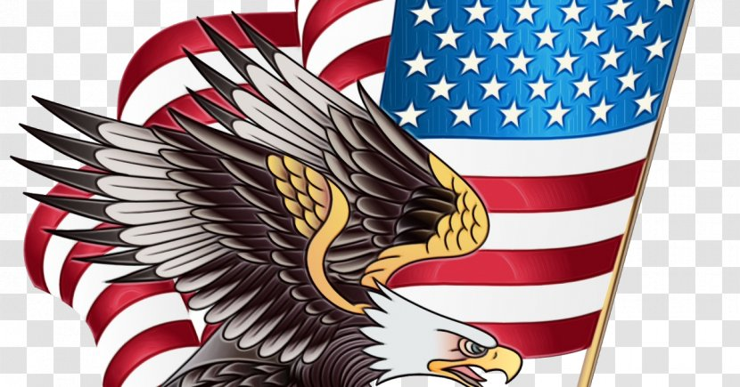 Veterans Day Celebration Background - 4th Of July Clipart - Golden Eagle Falconiformes Transparent PNG