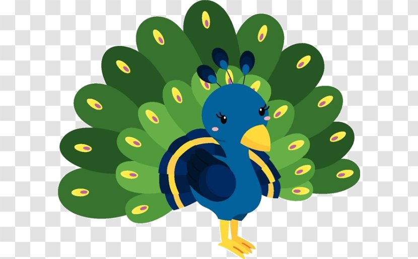 peafowl photography illustration galliformes cartoon peacock material transparent png cartoon peacock material transparent png