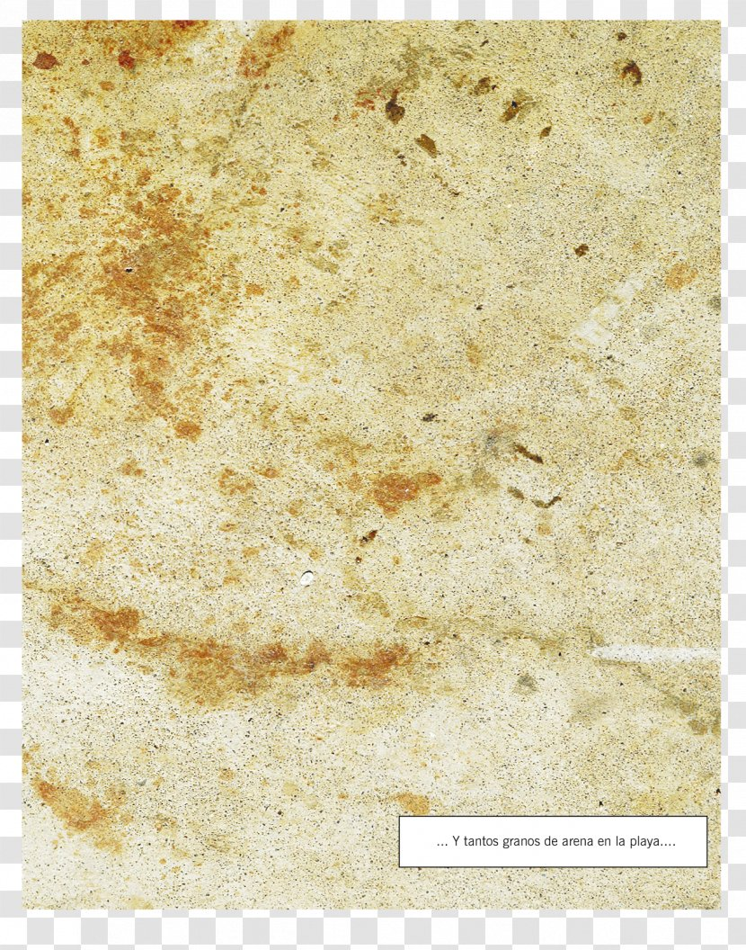 Ars Poetica Poetry 2013 Italian Social Protests Marble Art Archaeology Texture Transparent Png