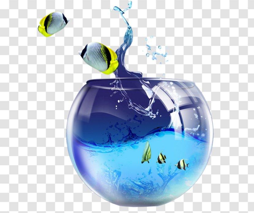 Desktop Wallpaper Light Samsung Galaxy J7 Aquarium Goldfish Highdefinition Video Transparent Png