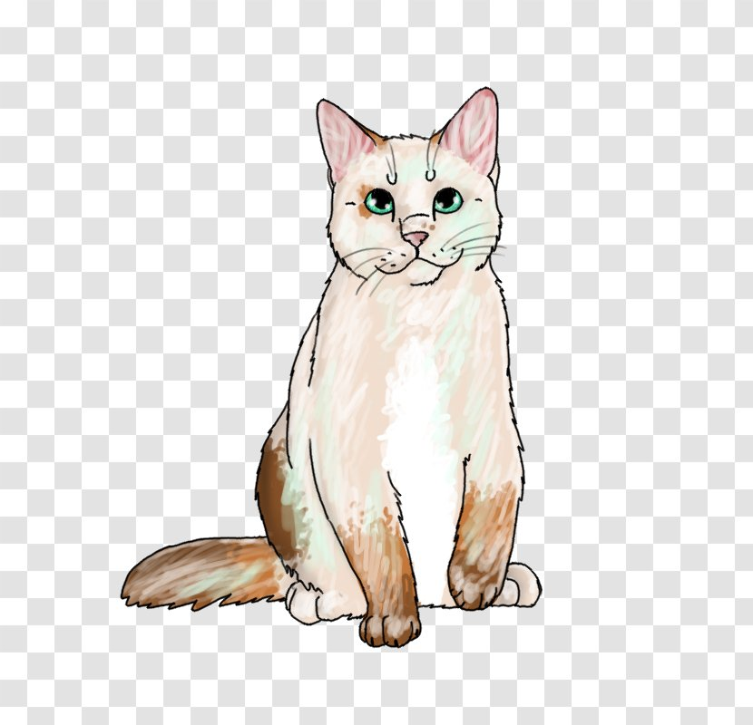 American Wirehair European Shorthair Whiskers Kitten Domestic Short-haired Cat Transparent PNG