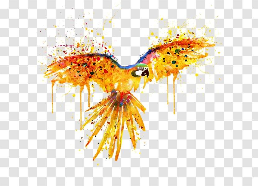 Watercolor Painting Parrot Bird Art Transparent PNG