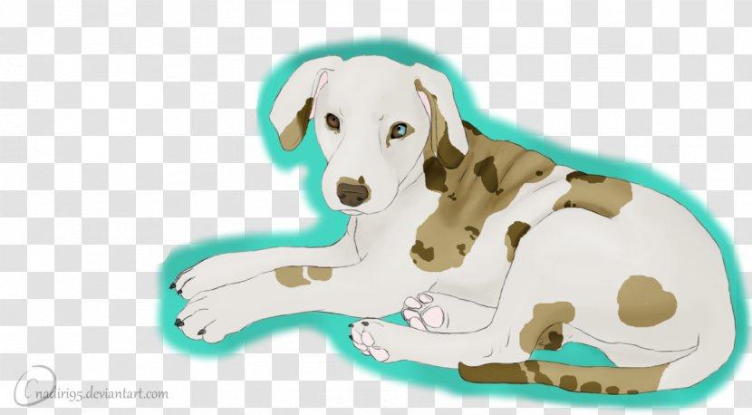 Puppy Dog Breed Snout - Carnivoran Transparent PNG